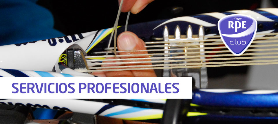 s-servicios-profesionales